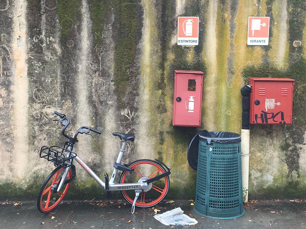 bicicletta firenze muro